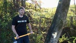 Kaliber, Kanone, Bäume fällen