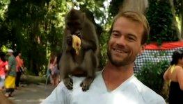 Affe auf der Schulter Sex