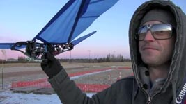 AMAZING RC BIRD, Original RC Ornithopter