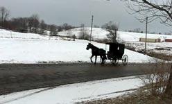amish, ski-fahren, pferdekutsche
