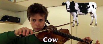 Tiergeräusche auf der Geige