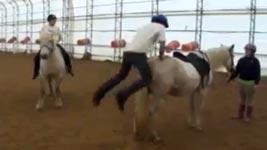 Pferd, Reiter, springen