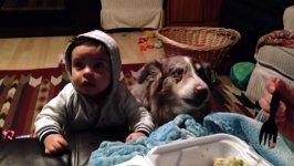 Hund Baby Mama