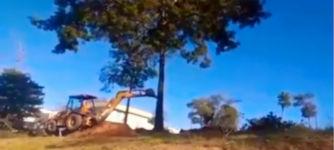 Bagger Baum Fail