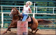 pferde krankenversicherung, pferd und reiter, horse, reiterferien
