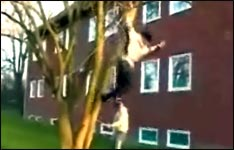bungee jump, bungee springen