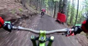 Bär jagt Fahrradfahrer