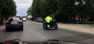 Bär fährt Motorrad