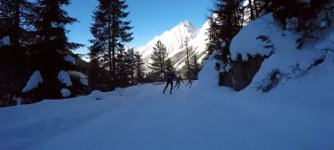 Abfahrt französische Nationalmannschaft Biathlon