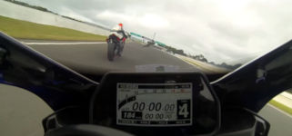 Bird Takes out rider at Phillip Island