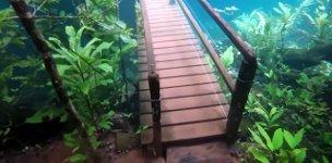 Brücke Hochwasser Brasilien