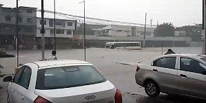 Buss Überschwemmung