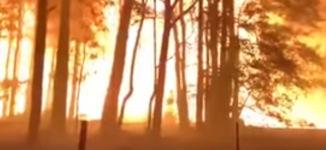 Geschwindigkeit der Waldbrände in Australien