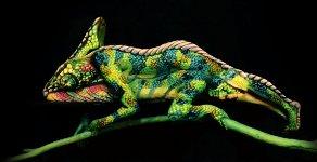 Chameleon Bodypainting