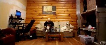 Hund Essen beobachten