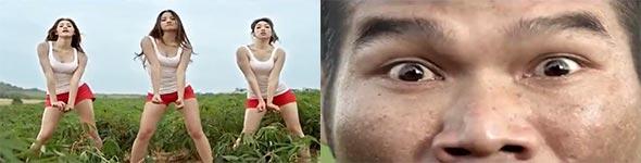 Dünger Werbung in Thailand