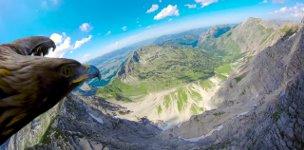 Adler GoPro Alpen