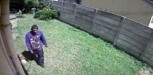 Einbrecher Flucht Hund