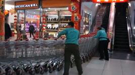 Einkaufswagen, Shopping Cart