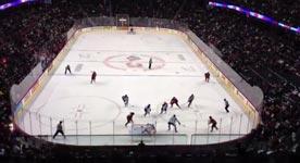 eishockey, teddybär