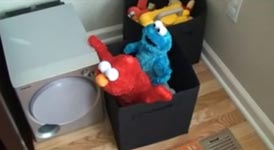 elmo, cookie-monster, sesamstraße