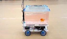 Fisch Technik Aquarium