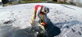 Fisch frisst Fisch eingefroren