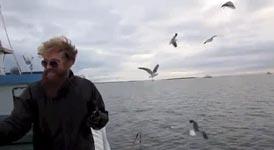 Fischer fängt eine Möwe in Flug