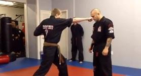 Gangnam Style Karate