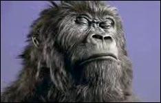 guerilla marketing, gorilla basketball, Cadbury