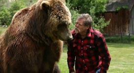 Grizzlybär, Garten