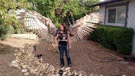 Pneumatische Halloween Flügel