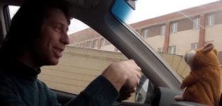 Hamster Polizist Auto Kontrolle