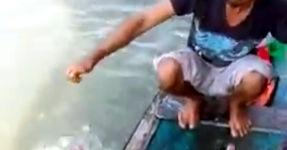 Einfach Piranhas fangen