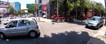 Yorkshire Terrier Fahrrad Mexiko