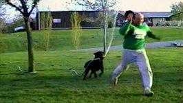 Hund Wasserschlauch nass spritzen