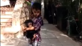Kind schützt Babyaffen vor Hyäne