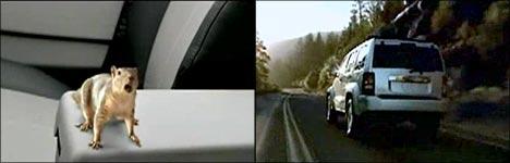 jeep gebrauchtwagen, neuwagen, auto kaufen, auto mieten