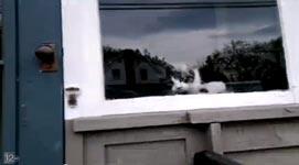 Katze, Briefträger, Post