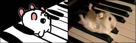klavier zubehör, hamster