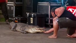 Krokodil beisst Mann