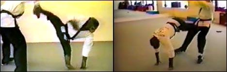 kampfsport, kung-fu, affe, karate, verteidigung