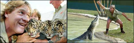 Steve Irwin, Crocodile Hunter, rip, miss you
