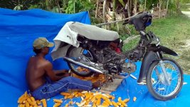 Maiskolben entmaisen Moped