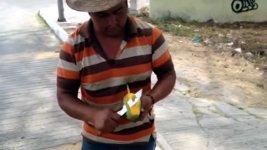 Mango Stiel zubereiten