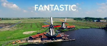 Niederlande Trump