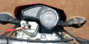 Motorrad Stier Kuh