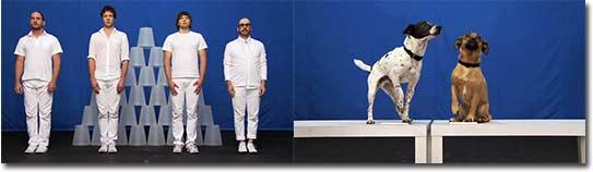 OK Go - White Knuckles, ikea, hunde