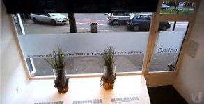 Frau parken Schaufenster