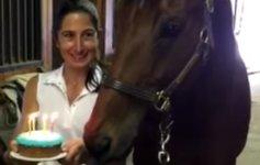Pferd Geburtstagstorte Kerze auspusten